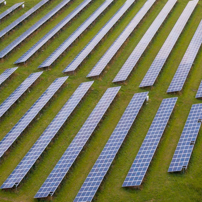 Corporate Social Responsibility: Sustainability image